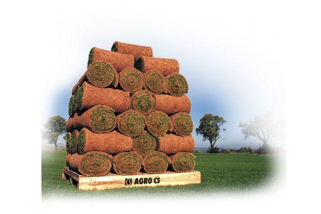 Trávníkový koberec Agroprofi - Park 1 m2
