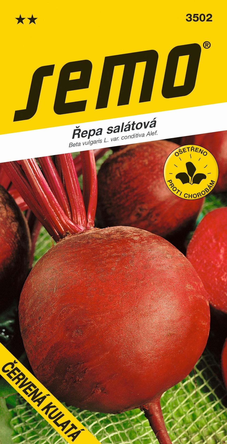 Řepa salátová ČERVENÁ KULATÁ