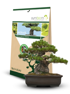 Ectovit Bonsai 100g
