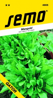 Mangold PERPETUAL SPINACH